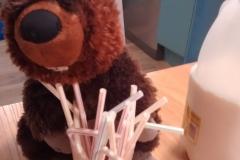 Horace enjoying his milk